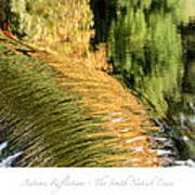Autumn Reflections -the South Natick Dam Poster