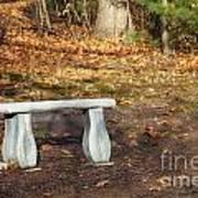 Autumn Seat Poster