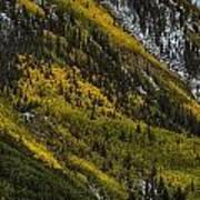 Autumn Streaks Poster