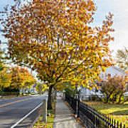 Autumn Stroll In Mystic Poster