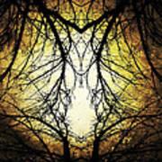 Autumn Tree Veins Poster