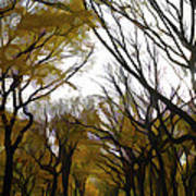 Autumn Trees Panoramic Poster