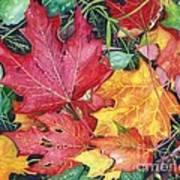 Autumn's Carpet Poster