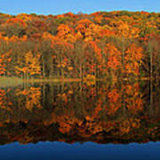Autumns Colorful Reflection Poster