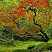 Autumn's Paintbrush Poster