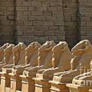 Avenue Of Sphinxes Poster