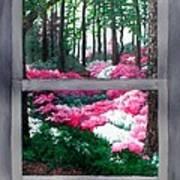 Azalea Bowl Overlook Gardens Poster