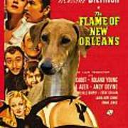 Azawakh Art - The Flame Of New Orleans Movie Poster Poster