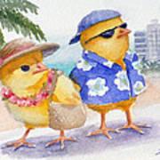 Baby Chicks In Honolulu Hawaii Poster