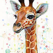 Baby Giraffe Watercolor  Poster