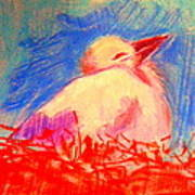 Baby Stork Painting By Sue Jacobi