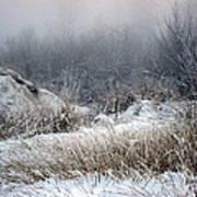 Back Woods Winter Poster