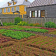 Backyard Garden In Louisbourg Living History Museum-1744-ns Poster
