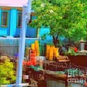 Backyard In Bright Colors Poster