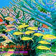 Bahamas Coral Reef Poster
