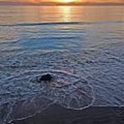 Baja California Rt 1 Coast 11 Poster