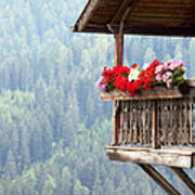 Balcony Overlooking The Forest Poster