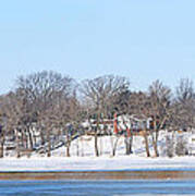 Bald Eagles In Tree In Grand Rapids Ohio Panorama Poster