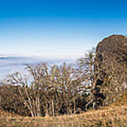 Bald Hills Vista Panorama Poster