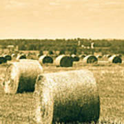 Baled And Ready Poster
