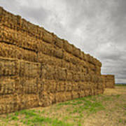 Bales Of Hay On Farmland 4 Poster