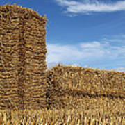 Bales Of Straw Against Blue Sky Poster