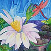 Bali Dragonfly Poster