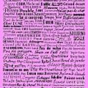 Ballet Terms Black On Pink  Poster