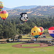 Balloons Over Wine Country Poster