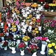Baltic Flower Shop Poster