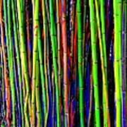 Bamboo Dream Poster