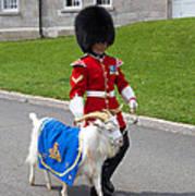 Baptiste The Goat Poster