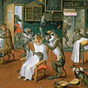 Barbers Shop With Monkeys And Cats Oil On Copper Poster