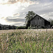 Barn And Grass Poster
