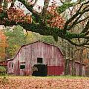 Barn And Tree Poster