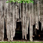 Barn Boards - Rustic Decor Poster