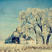 Barn Frosty Trees Poster by Julie Hamilton