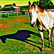 Barn Horse Poster