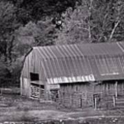 Barn In Black And White Poster by Edward Hamilton