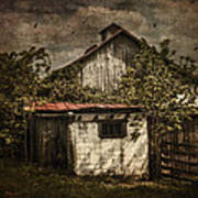 Barn In Morning Light Poster by Kathy Jennings