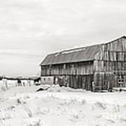 Barn Quebec Province In  Black And White Poster