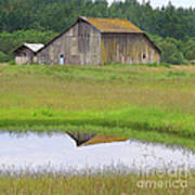 Barn Reflection Poster