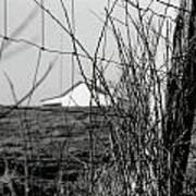 Barn Through Fence Poster