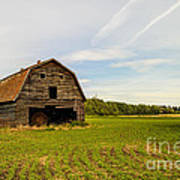 Barn On The Field Poster