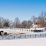 Barn With Horses  Poster