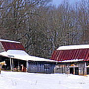 Barns And Horses In Winter Poster