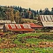Barns On A Farm Poster