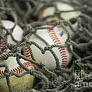 Baseballs And Net Poster