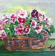 Basket Of Pansies Poster