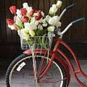 Basket Of Tulips Poster